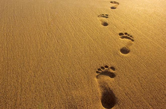 Footsteps-660-jpg1